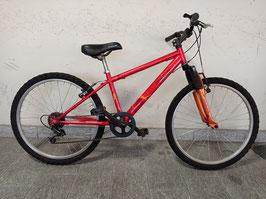 Mountain Bike ruote del 24