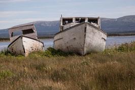 Schiffswrack Newfoundland 1