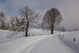 Winterweg Gäbris 2
