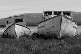 Schiffswrack Newfoundland 3