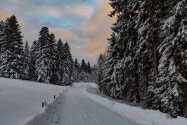 Winterweg Gäbris 5