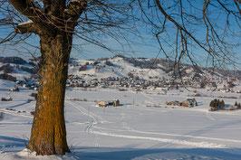 Gais im Winter mit Baum