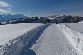 Winterweg Gäbris 4