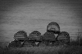 Krabbenfallen Neufundland / Kanada