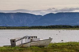 Schiffswrack Newfoundland 4