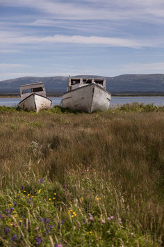 Schiffswrack Newfoundland 5