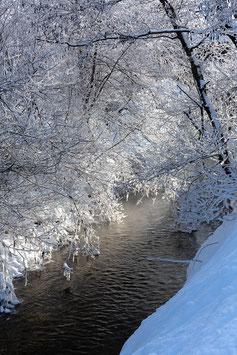 Bach mit Schneebäumen