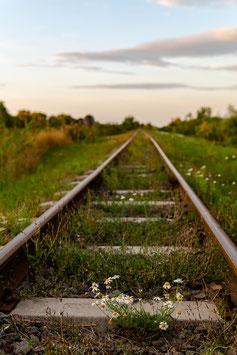 Bahngleis Ungarn