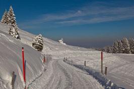 Winterweg Gäbris 3