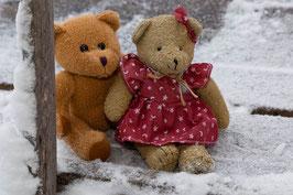 2 Bären 1