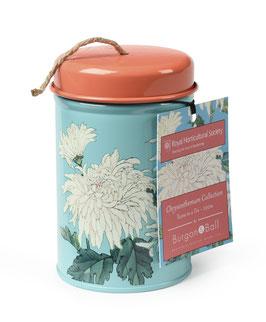 Chrysanthemum - Gartenschnur mit Dose