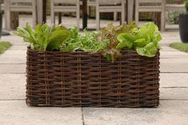 Burgon & Ball - Salat Weide-Übertopf