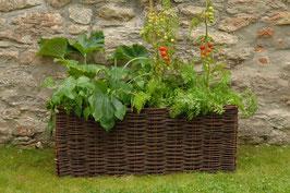 Burgon & Ball - Gemüse & Tomaten Weide-Übertopf