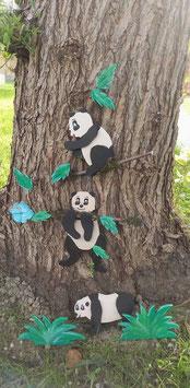 Les pandas espiègles