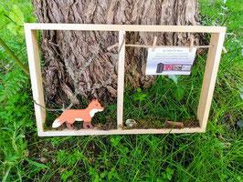 Cadre photo : Le renard