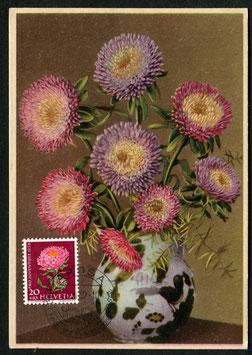 3.6.1959 PJ175 Sommeraster Maximumkarte gest. Arosa