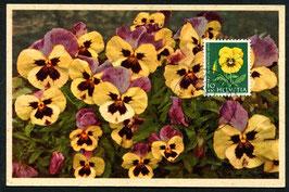 1.12.1958 PJ174 Gartenstiefmütterchen Maximumkarte FDC
