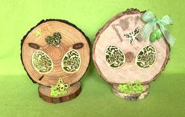Baumscheibe mit zarten Aussägebildern