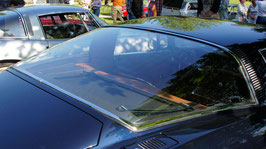 Grifo Heckscheibe / rear window
