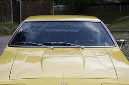Iso Lele Windschutzscheibe / windshield