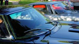 Grifo Windschutzscheibe / windshield