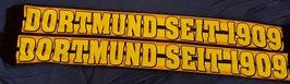 Dortmund seit 1909 Seidenschal Neu