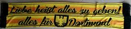 Dortmund Liebe alles geben Seidenschal