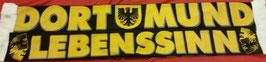Dortmund Lebenssinn Seidenschal