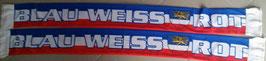 Rostock Blau Weiss Rot Seidenschal