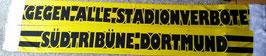 Dortmund Gegen alle Stadionverbote Seidenschal