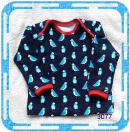 Babyshirt oder Kindershirt mit langen Ärmeln!