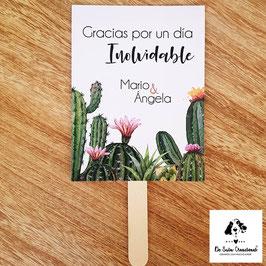 Pai pai colección cactus