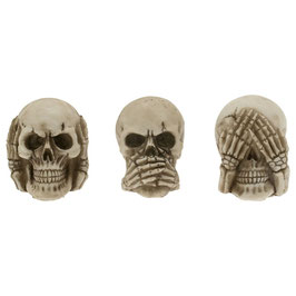 Les 3 crânes de la sagesse