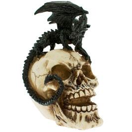 Le dragon sur crâne