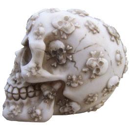 Le crâne avec enluminures
