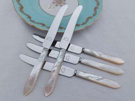 Edelstahl und Perlmutt Messer  BL37