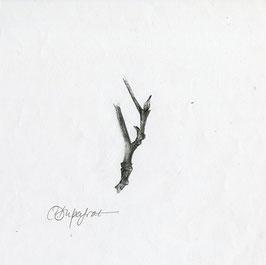 Bourgeon 2