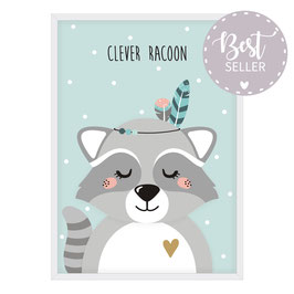 Waschbär - Clever Racoon