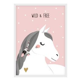 Pferd - Wild & Free