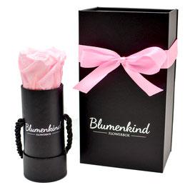 Flowerbox Baby - Powder Pink