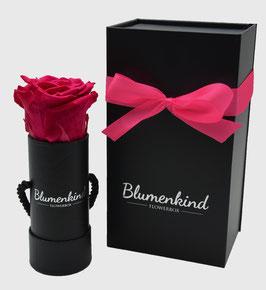 Flowerbox Baby - Bridal Pink