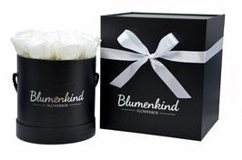 Flowerbox Queen - Pure White