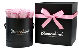 Flowerbox Queen - Powder Pink