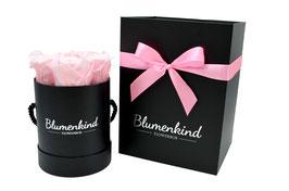 Flowerbox Princess - Powder Pink