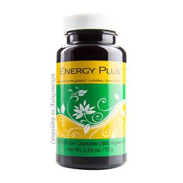 Energy Plus ®