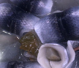 Gabelrollmöpse