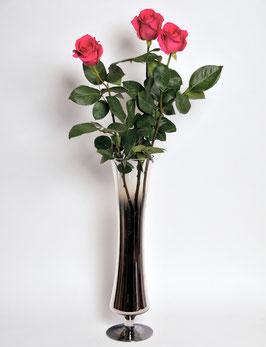 3 Rosen