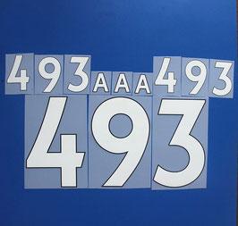 胸番号No.493
