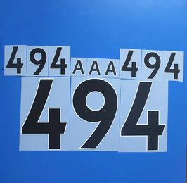 胸番号No.494