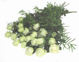 Rêve Blanc